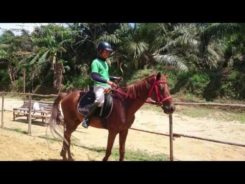 Tutorial horseback archery by coach Najib at Wisata Dakwah Okura Pekanbaru