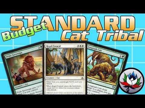 "MTG – G/W Cat Tribal ""Budget"" Standard Deck Tech for Magic: The Gathering!"