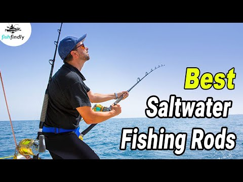 Best Saltwater Fishing Rods In 2020 – Best Solution's From The Experts