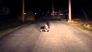 Late Night Skunk Fight Club