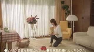 伊東美咲廣告集(4)