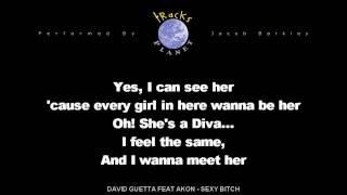 David Guetta feat Akon - Sexy Bitch en version karaoke instrumental