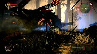 Is The Witcher 2 Worth Your Money? Quick Insight! [1080p]