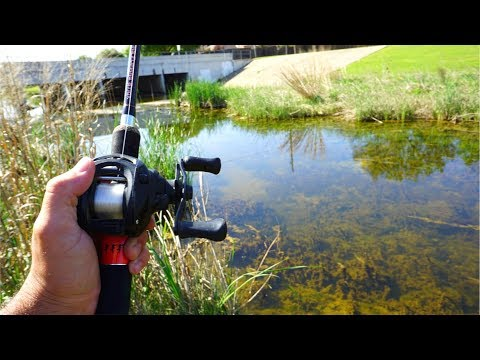 ULTRA CLEAR Creek Fishing for Spawning Bass!!!