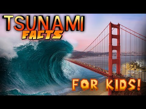 Tsunami Facts for Kids!