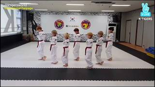 WANNA ONE (워너원) - ENERGETIC (에너제틱) taekwondo cover by Little Tigers (practice version)
