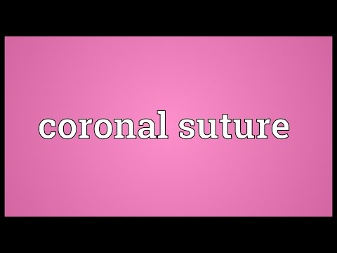 Coronal suture Meaning