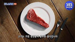 [SBS 스페셜] 예고 '육채 전쟁 1차 대전 : 카니…
