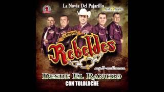 Los Nuevos Rebeldes - La Novia Del Pajarillo (Desde El Rancho Con Tololoche 2013)