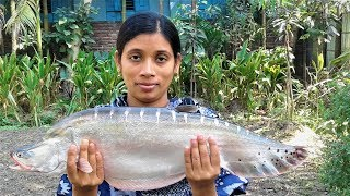 Bengali Fish Recipe | Chitol Macher Jhol Recipes | Village Style Cooking By Street Village Food