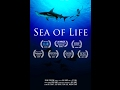 Trailer for Sea of Life