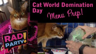CAT WORLD DOMINATION DAY 2020: Summer helps prepare kitty treats for an 80s themed party