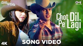 Chot Dil Pe Lagi Song Video - Ishq Vishk | Alisha Chinai & Kumar Sanu | Shahid & Shehnaz