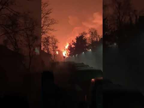 Im Krefelder Zoo brannte es 01.01.2020