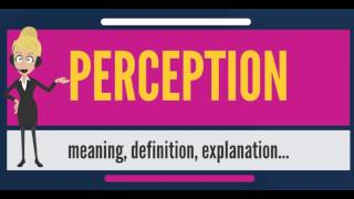 What is PERCEPTION? What does PERCEPTION mean? PERCEPTION meaning, definition & explanation