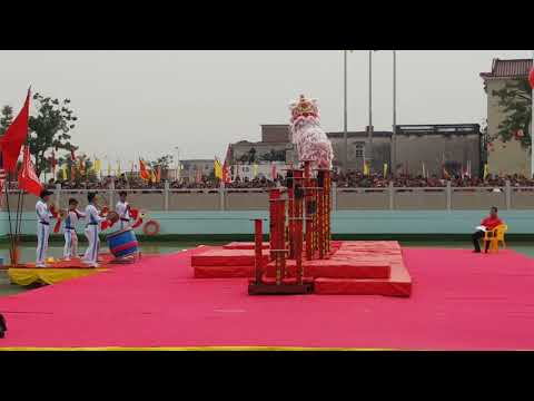 2017 Choy Lee Fut World Lion Dance Competition - Team E KSK