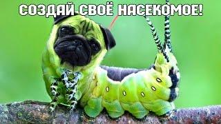Создай Свое Насекомое! - Bug Rampage