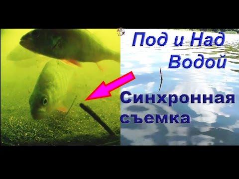 летняя рыбалка на мормышку - 2016-05-23 10:45:02