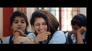 Priya prakash varrier official song    valentine day special
