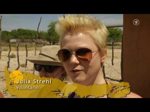 01 - Harnas - Abenteuer Afrika