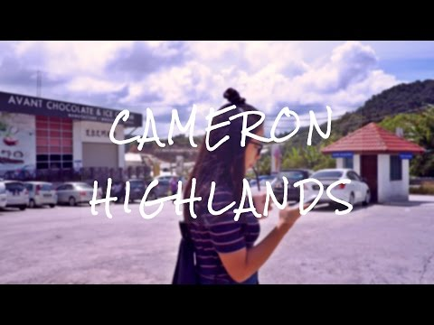 Vlog Diary | Cameron Highlands 2016