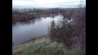 Dachshund At  St Margaret´s Loch Edinburgh