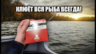 Насыпьте это Клюёт вся рыба всегда