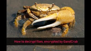 GandCrab Ransomware  Remove and Decrypt Files Free