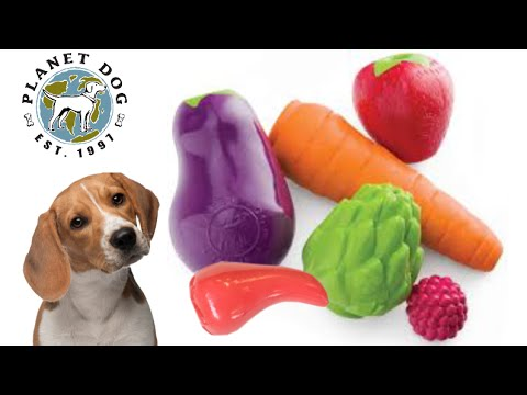 orbee-tuff-vegetable-chew-toys-from-planet-dog