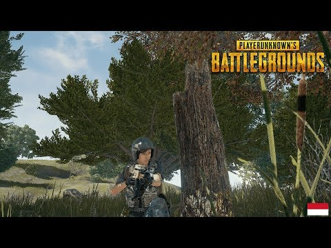 [PUBG] LOVE AND HATE WITH PUBG | Indonesian/English | 18.01.18