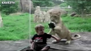 Funny videos 2016 for kids funniest most hilarious