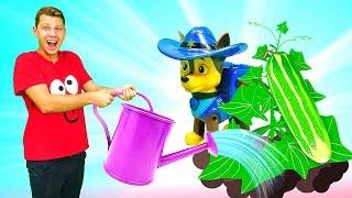 Видео для детей— Веселая Школа— Игра: Ферма, грядки и овощи для самых маленьких