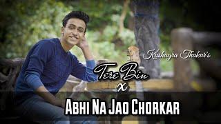 Tere Bin X Abhi Na Jao   Kushagra Thakur   Wazir