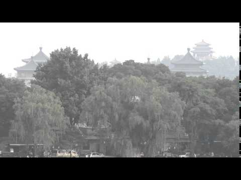 Beijing Skyline with Trees -  - Stock Footage