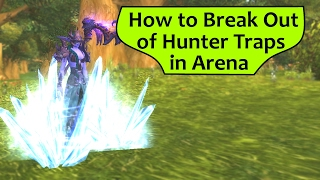 How to Break Out of Hunter Traps in WoW Arena
