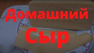Вкусный Сыр в домашних условиях Домашний сыр за 5 дней Самый быстрый твердый сыр из козиного молока
