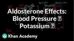 hqdefault - Does The Kidney Secrete Aldosterone