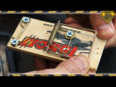 Turning Mousetraps into