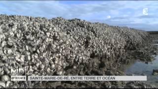 SUIVEZ LE GUIDE : Sainte-Marie-de-Ré, entre terre et océan