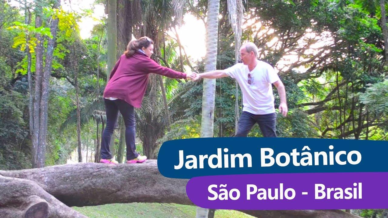 casamento no jardim botanico sao paulo:Jardim Botânico em São Paulo/SP – YouTube