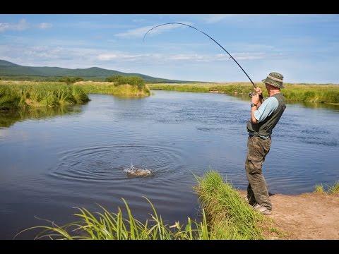 Рекордная рыбалка в Краснодарском крае! Выселковский район, река Гаджировка!