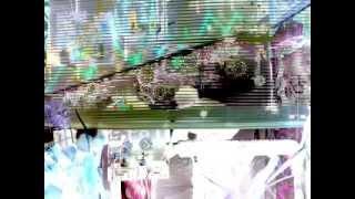 Protonic Experimental in space sebusca.MX