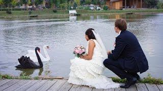 Красивая свадьба в Подмосковье Даши и Максима