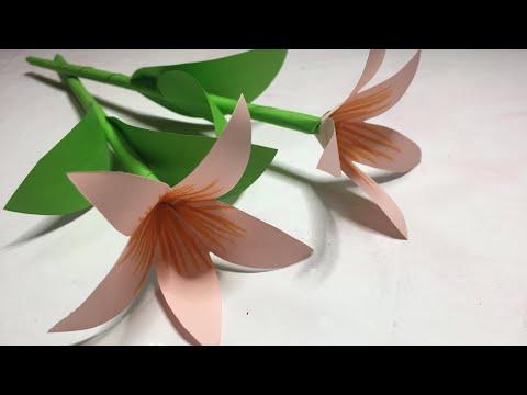 Origami Dolphin - Jo Nakashima | 360x480