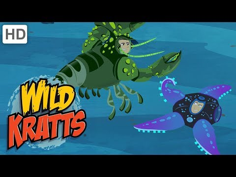 Wild Kratts - The Sea Creature Powers!
