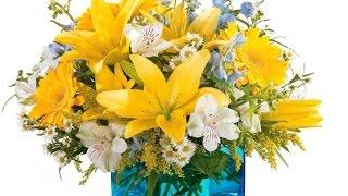 Доставка цветов Волгоград, фото вручения в подарок!(Закажите цветы с доставкой в любой город: http://goo.gl/JDnnq1 Преподнести цветы – теперь так просто! Интернет-магаз..., 2015-02-10T14:22:54.000Z)