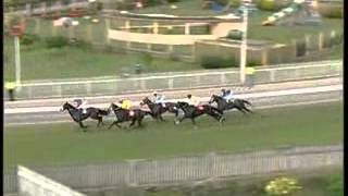 Legal Maxim - C.Segeon - 2012 Mohammad Moorad Keerpah - Free Horse Racing Tips