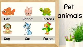 Pet animals.... Learning for kids