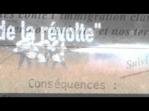 L&39;art de la révolte la  de Denetem Touam Bona