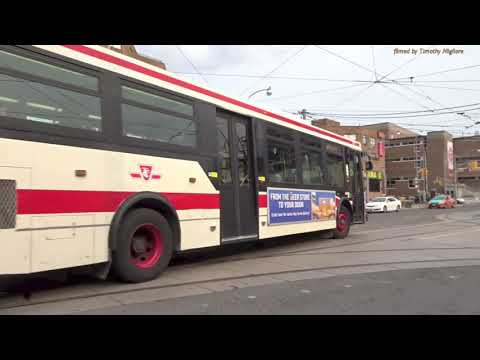 Buses In Toronto, Canada 2018